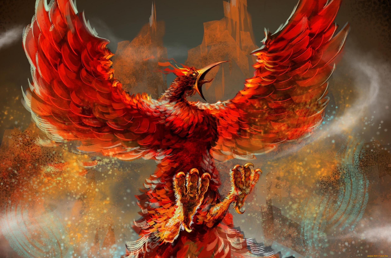 Обои крылья, феникс. Животные foto 17